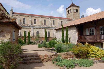 Jardin graphique 2 for Jardin graphique